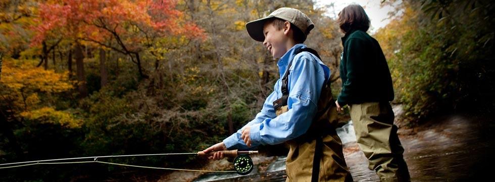 Davidson River Fly Fishing
