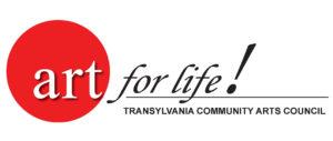 Beginner/Intermediate Hand Building @ Transylvania Community Arts Council        