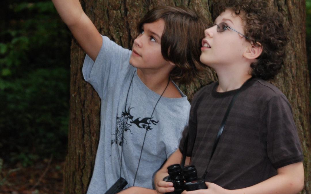 Backyard Birding by Ear: For Beginners